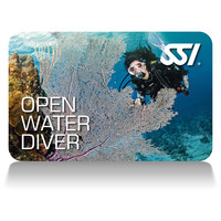 Beginner Tauchkurs Open Water Diver